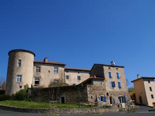 Vivez votre rêve dans un château du 12 15eme - Saint-Bonnet-le-Chastel vacation rentals