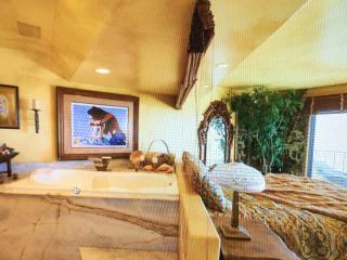 Beautiful 1 bedroom Apartment in Dana Point - Dana Point vacation rentals