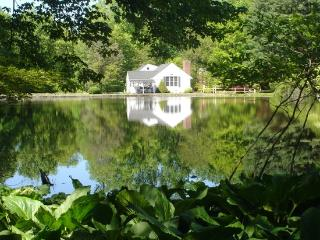 Country Home with Pond on 11 Acres - Boonton vacation rentals