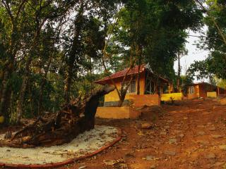 Perfect Munnar Cottage rental with Internet Access - Munnar vacation rentals
