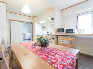 A02 namba Dotonbori shinsaibashi 903 - Osaka vacation rentals