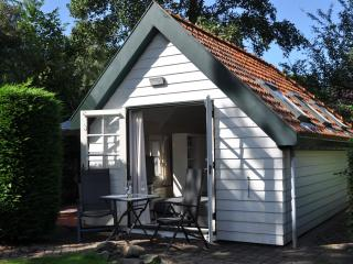 Nice Cottage with Internet Access and Garden - Schoorl vacation rentals