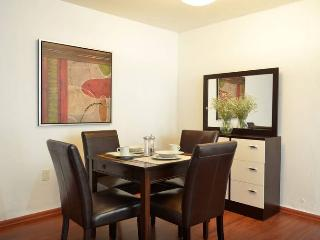 Premium central location in GDL 2 bedroom wifi - Guadalajara vacation rentals