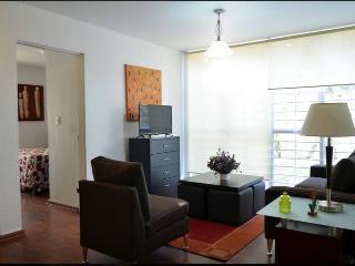 Premium central location in GDL 2 bedroom wifi - Guadalajara vacation rentals
