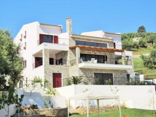 V.I.P. VALUE FOR MONEY POOL VILLA Near Anc. Delphi - Erateini vacation rentals