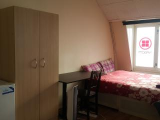 1 bedroom Private room with Internet Access in Newcastle upon Tyne - Newcastle upon Tyne vacation rentals