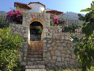 Detach villa private pool terrace orchard sea view - Kalkan vacation rentals
