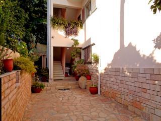 Nice Condo with Internet Access and Garden - Parga vacation rentals