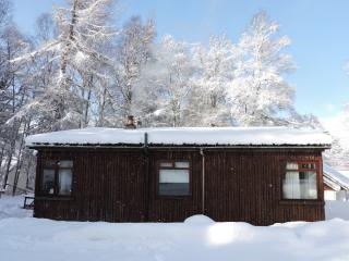 Rustic Cabin in Remote Woodland near Loch Rannoch - Kinloch Rannoch vacation rentals