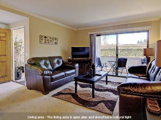 Comfort & Convenience in Orange County - Laguna Niguel vacation rentals