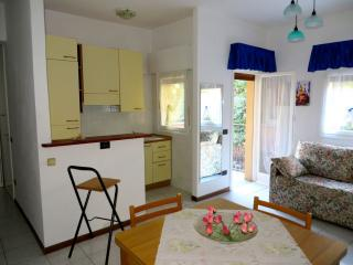 Sunny Condo with Balcony and Satellite Or Cable TV - Pallanza vacation rentals