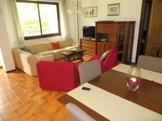 Perfect 3 bedroom Apartment in Stresa - Stresa vacation rentals