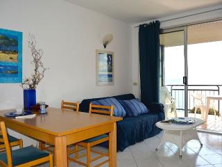 Lovely Condo with Internet Access and Garden - Ghiffa vacation rentals