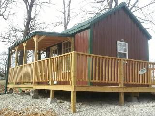 Secluded Truman Lake Studio Cabin (Z and ZZ) - Lowry City vacation rentals
