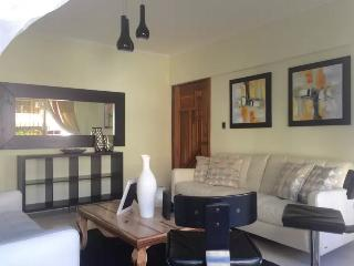 Elegant and centrical apartment 2 - Santo Domingo vacation rentals