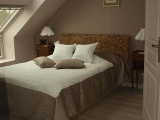 L'ETAPE DE LA FOUEE - Suite Marie-Flavie - Saint-Dolay vacation rentals