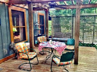 Treetops Cottage. - South Haven vacation rentals