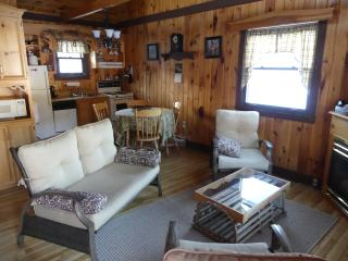 Beautiful Cottage with Internet Access and Dishwasher - Bonshaw vacation rentals
