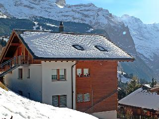 Beautiful Condo with Internet Access and Television - Wengen vacation rentals