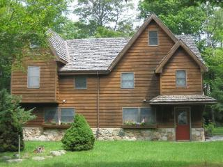 Beautiful House with Internet Access and Hot Tub - Canaan Valley vacation rentals