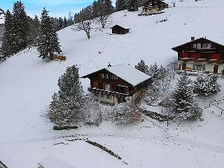 1 bedroom Apartment in Wengen, Bernese Oberland, Switzerland : ref 2297329 - Lauterbrunnen vacation rentals