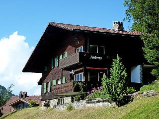 3 bedroom Apartment in Wengen, Bernese Oberland, Switzerland : ref 2300480 - Wengen vacation rentals
