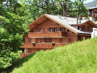 3 bedroom Apartment in Wengen, Bernese Oberland, Switzerland : ref 2300492 - Wengen vacation rentals