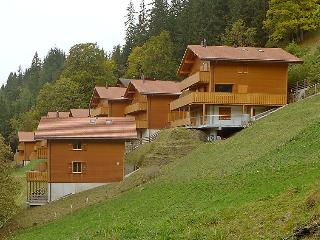 3 bedroom Apartment in Wengen, Bernese Oberland, Switzerland : ref 2300503 - Wengen vacation rentals