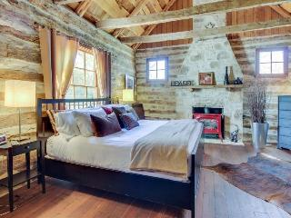 Dog-friendly, rustic cottage w/private hot tub and dry sauna, close to Main St! - Fredericksburg vacation rentals