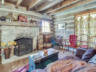 Quiet, dog-friendly cabin with an upscale rustic interior, close to downtown! - Fredericksburg vacation rentals