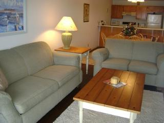 2 bedroom Condo with Internet Access in Osage Beach - Osage Beach vacation rentals