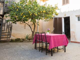 TOUS - Property for 12 people in SA POBLA - Sa Pobla vacation rentals