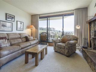 Bronze Tree Condominiums - BT205 - Steamboat Springs vacation rentals