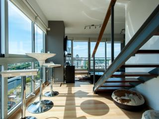 The Six Senses Penthouse on 3 Levels - Buenos Aires vacation rentals