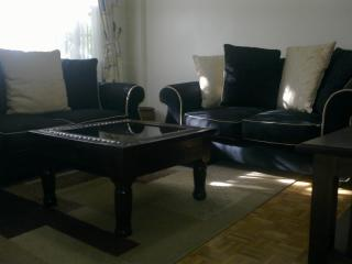 Cosy 1-Bedroom Furnished Apartment to Let - Nairobi vacation rentals