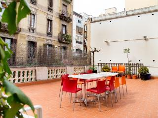 Gallery apartment with sunny terrace - Barcelona vacation rentals