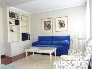 Sunny apt University +parking &wifi - Santander vacation rentals