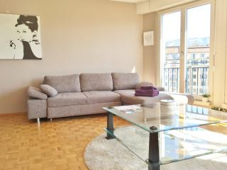 Domino Central Flat with Parking - Geneva vacation rentals