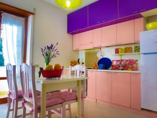 CASESCAURI Luminoso appartamento a 100mt dal mare! - Minturno vacation rentals