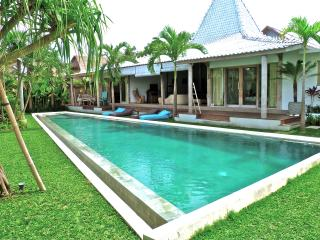 Deluxe Traditional Joglo/Contemporary Villa - Canggu vacation rentals