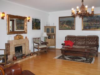 High class vintage apartment in central Reykjavik - Reykjavik vacation rentals