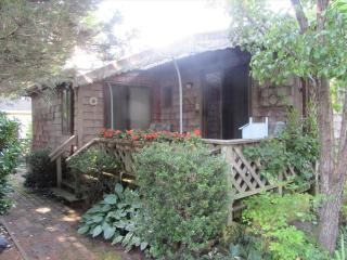 315 Alexander Avenue 7827 - Cape May Point vacation rentals