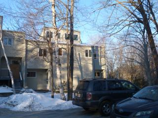 3 bedroom Apartment with Television in Mount Sunapee - Mount Sunapee vacation rentals
