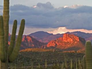 Beautiful Casita For Vacation in Grandcanyon state - Peoria vacation rentals