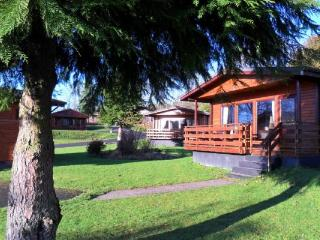 Birch lodge 12 - Family accommodation on the Southern West Coast - New Galloway vacation rentals