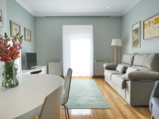 Sanchez Toca Center - Iberorent Apartments - San Sebastian - Donostia vacation rentals