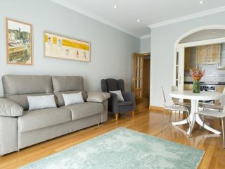 Sanchez Toca Center - Iberorent Apartments - San Sebastian - Donostia vacation rentals