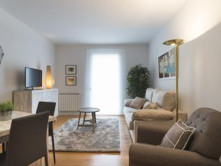 Garibay Boulevard - Iberorent Apartments - San Sebastian vacation rentals