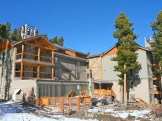 Ski Watch - Ski In/Out, Exclusive Peak 8 Location! - Breckenridge vacation rentals