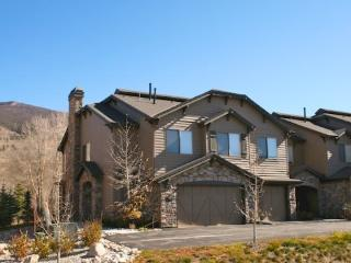 Trout House - Silverthorne vacation rentals